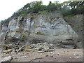 TQ8813 : Rockfall at Fairlight Cliffs by Marathon