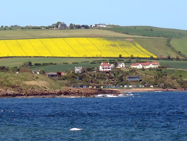 Coldingham Bay from south-east