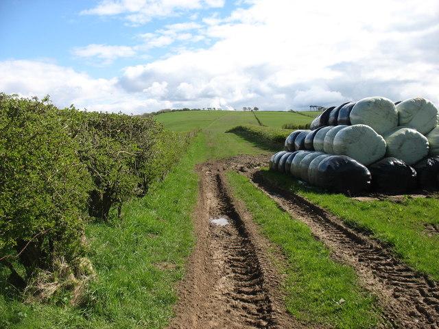 Farmland north-east of Bothel