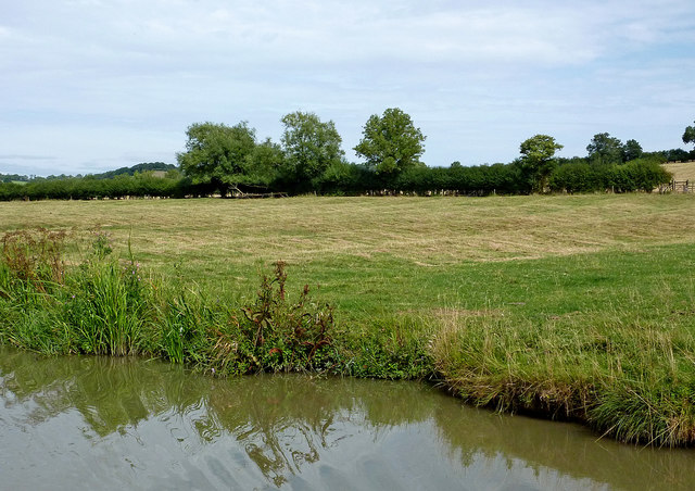Canalside pasture north-east of Willoughby in Warwickshire