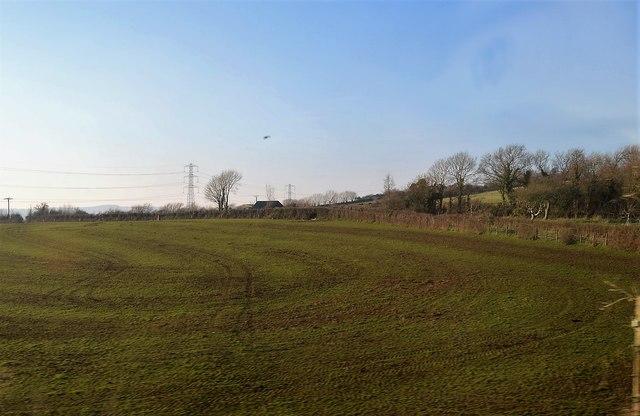 A Cornish Field