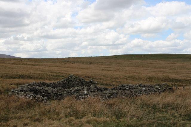 Sheep dip in Cwm Tywyll