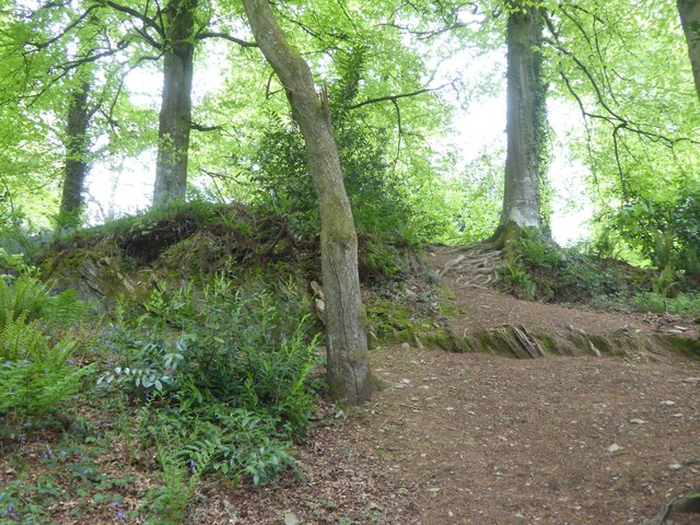 Exposed slates in Quarryland, Fyne Court