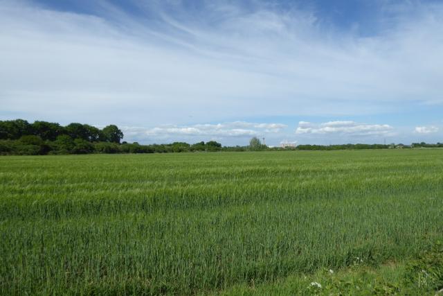 Farmland from Gowdall Road