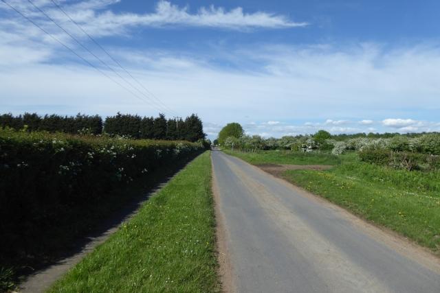 Along Field Lane