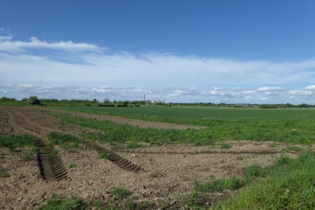 Farmland off Gowdall Lane