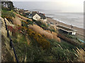 SY3391 : A wild November day in the Lister Gardens, Lyme Regis by Robin Stott