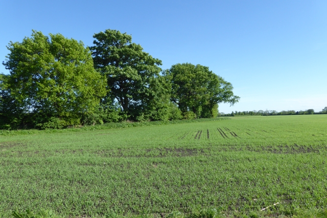 Farmland near Bank End House