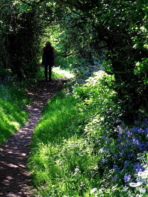 Creel Road (footpath)