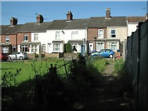 TG2407 : Terraced cottages in Hardy Road by Evelyn Simak
