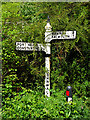 SW7528 : Old Signpost by Anne Burgess