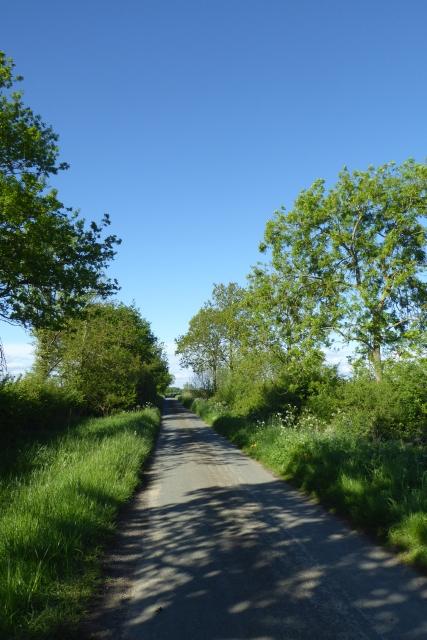 Along Common Lane