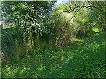 SK6515 : The remains of Thrussington Mill Lock (n.5), Melton Mowbray Navigation by Alan Murray-Rust