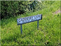 SK6513 : Gaddesby Lane Rearsby (cont'd) by Alan Murray-Rust