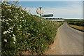 SX8348 : Signpost, Blackwell Cross by Derek Harper