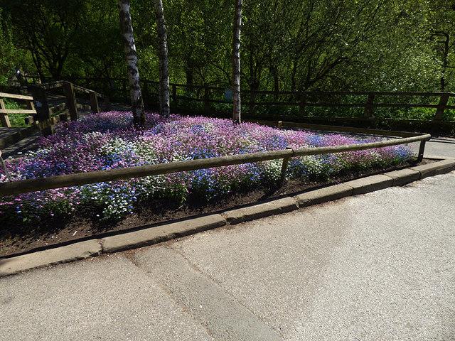 Triangular flower bed, Golden Acre Park