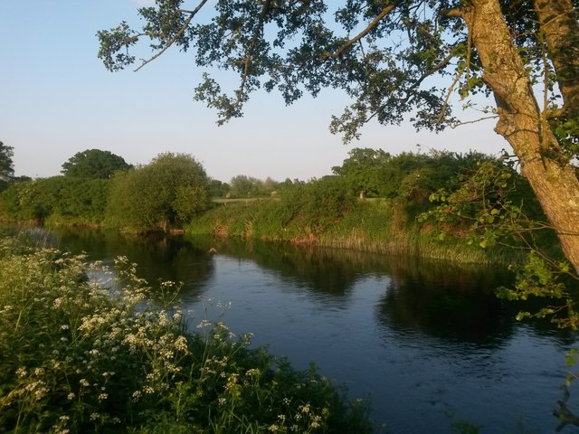 Little Canford: a slight bend in the Stour