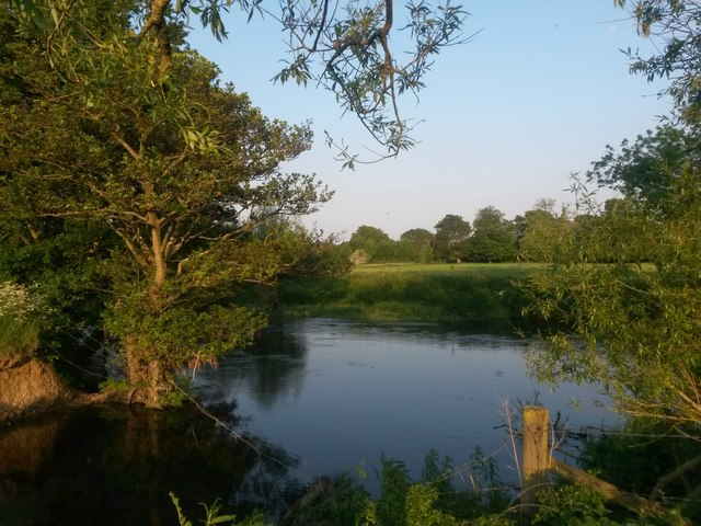 Little Canford: looking across the Stour