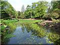 SJ7481 : Tatton Park gardens - ornamental pond by Stephen Craven