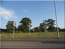 TL2046 : Baden Powell Way, Biggleswade by David Howard