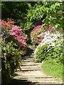 SU9941 : Winkworth Arboretum - Azalea Steps - bottom by Rob Farrow