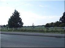 TL2533 : Clothall Common by Wallington Road by David Howard