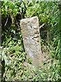 ST4714 : Guidestone, West Chinnock by MilestoneSociety