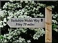 TA0325 : Yorkshire Wolds Way by Bernard Sharp