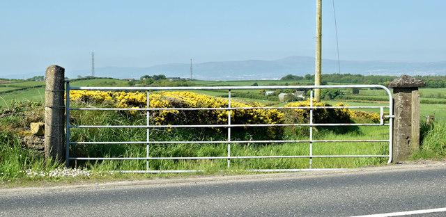 Field gate, Ballykeel, Holywood (May 2018)