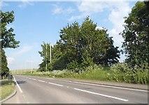 TL2534 : Icknield Way, Clothall Common by David Howard