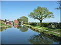 SK0505 : The Wyrley & Essington Canal, looking north by Christine Johnstone