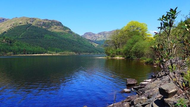 Tranquil Loch Eck