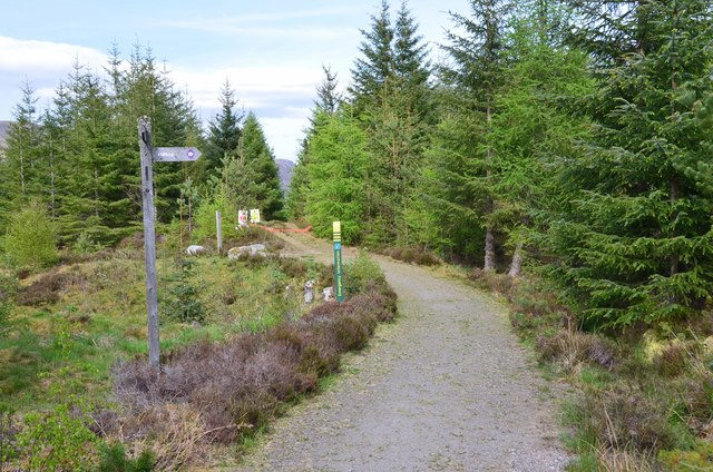 Path junction, Strath Mashie
