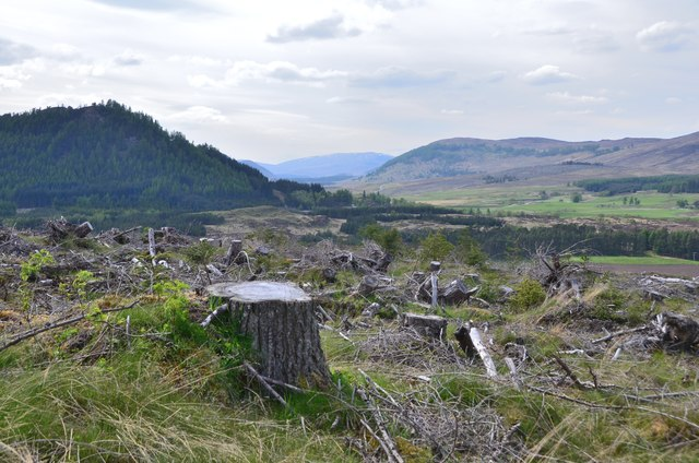 Clear-felled forestry above Strath Mashie