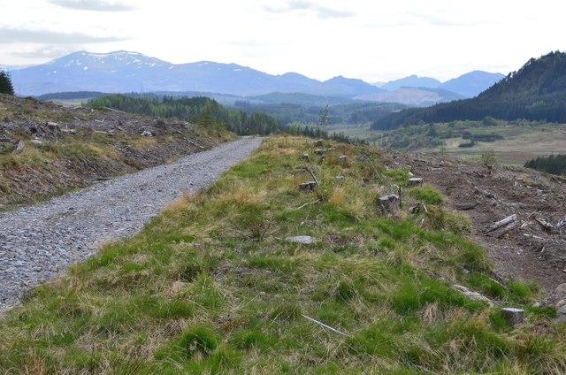 Forestry track, Strath Mashie
