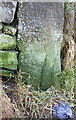 SE0638 : Benchmark on gatepost at entrance to Midgeham Quarry by Roger Templeman