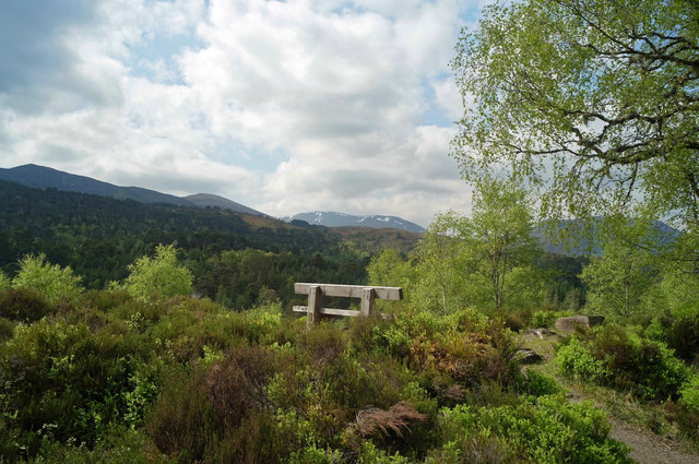 Bench beside the River Affric Car Park