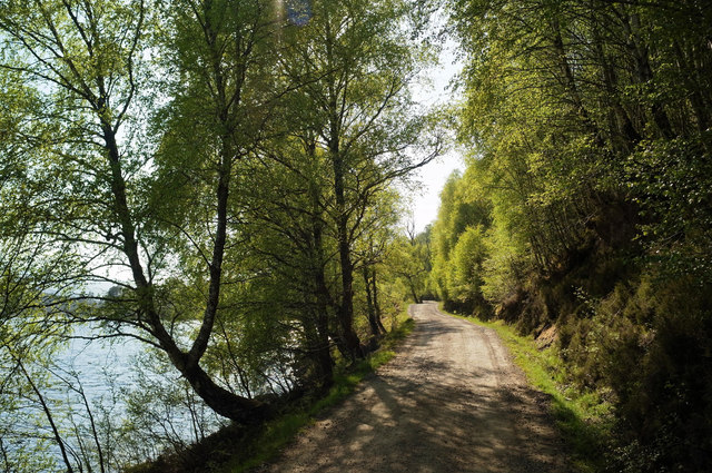 Road to Affric Lodge by Loch Affric