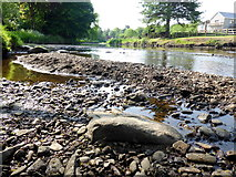 H4772 : Gravel along the Camowen River by Kenneth  Allen