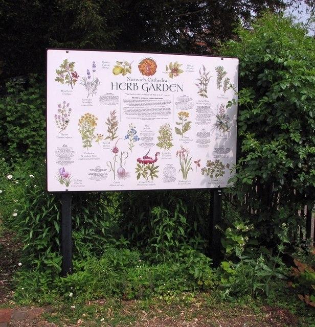 65 The Close - herb garden (information board)