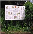 TG2308 : 65 The Close - herb garden (information board) by Evelyn Simak
