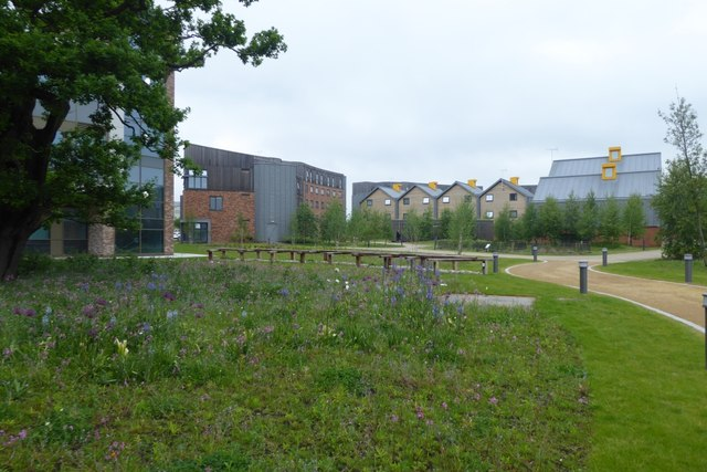 Langwith College