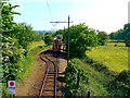 SY2593 : Tye Lane Loop, Seaton Tramway by Brian Robert Marshall