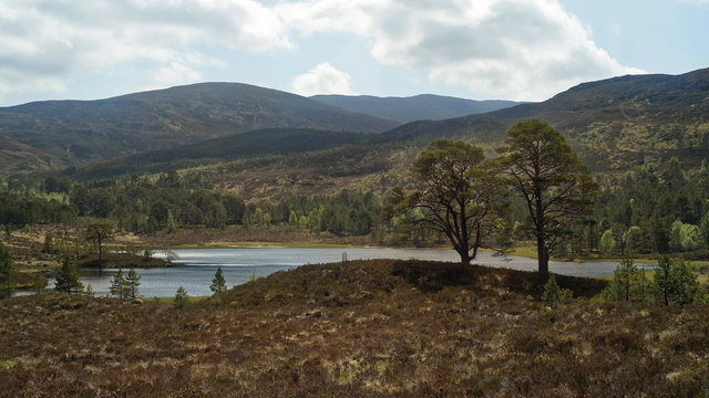 Loch Affric from the Affric Kintail Way