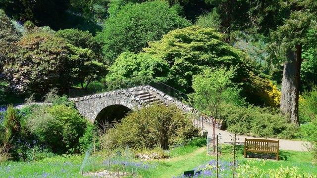 The Swiss Bridge at Dawyck Botanic Garden