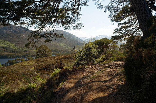 Track above northern shore of Loch Affric