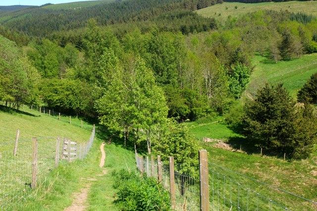Path below Glenbield