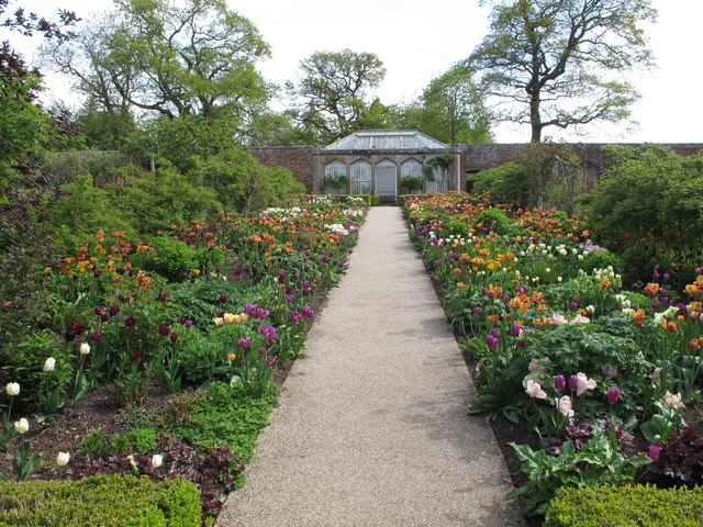 Abbotsford walled garden with tulips