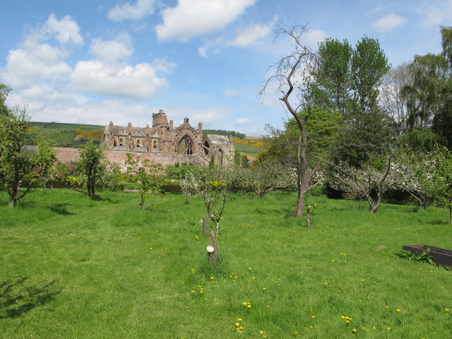 Priorwood orchard and Melrose Abbey