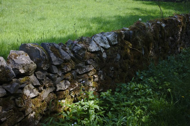 Sun-dappled stone wall